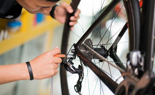 530x325-galeria_cycling